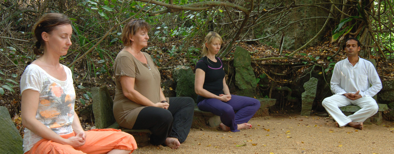 Meditationsgruppe im Wald