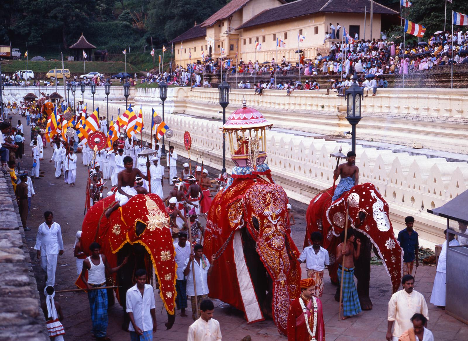Ausflug zum Kandy Parahara Festival in Sri Lanka - Lanka Princess