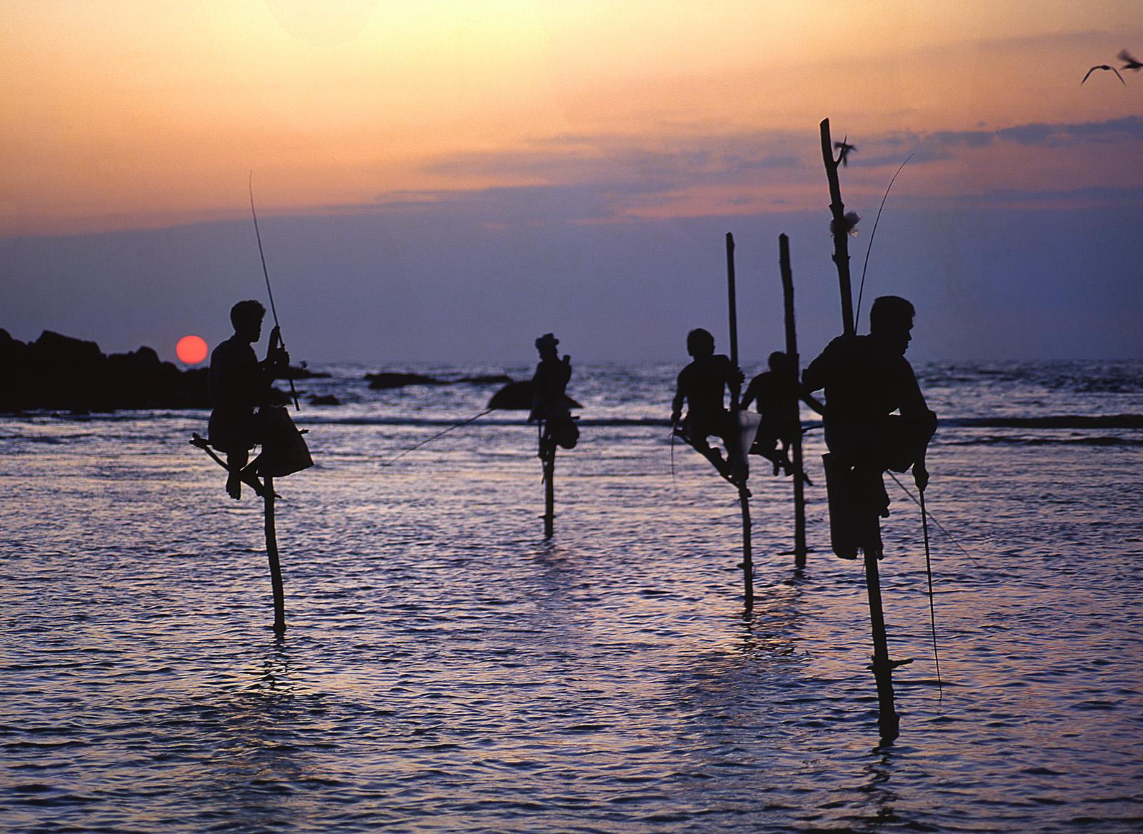 Ausflug zu Stelzen Fischer in Sri Lanka mit Lanka Princess