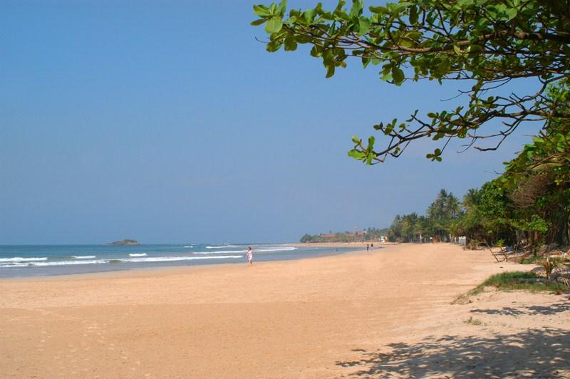Meer, Strand und Bäume und blauer Himmel auf Sri Lanka