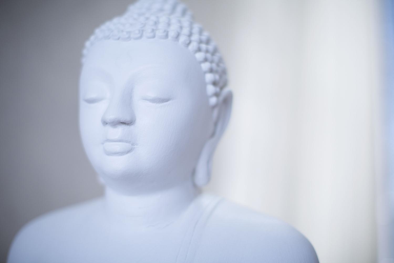 Sri Lanka Buddha Statue Lanka Princess