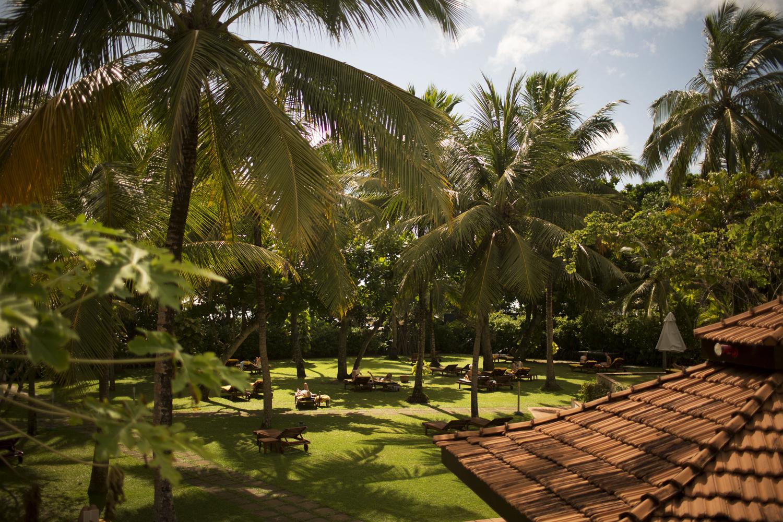 Ziegel Dach und Palmen im Hotel Lanka Princess auf Sri Lanka