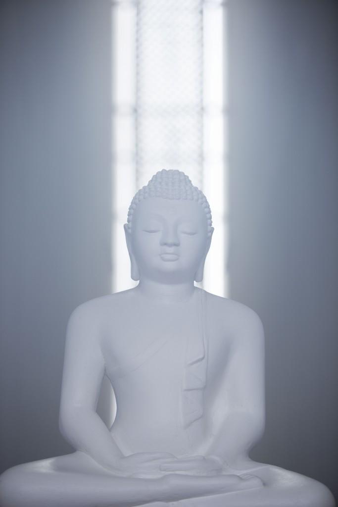 2014_LankaPrincess_Meditation_Buddha