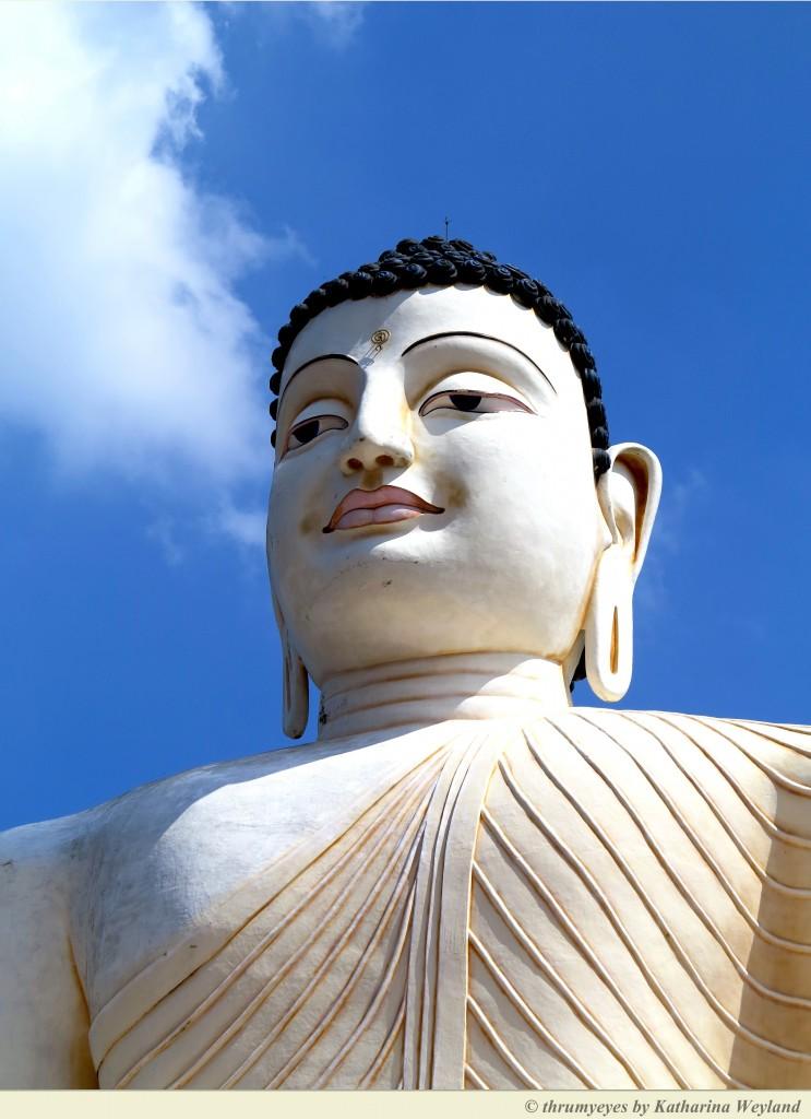 Lanka Princess Hotel Ayurveda - Buddha Statue
