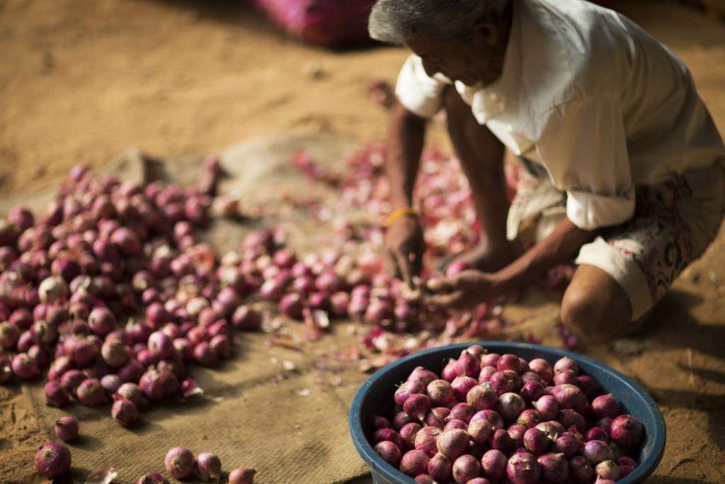 2014_LankanPrincess_vegetableMarket